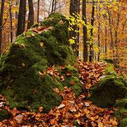 Herbst im Trubachtal | © Bernhard Thum, Bild-ID TR-XX-20XX-005