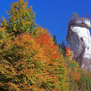 Rabenfels mit Herbstwald | © Bernhard Thum, ID-Nummer HE-XX-20XX-002