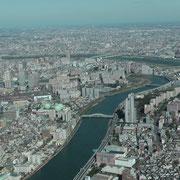 東京スカイスリーから望む