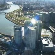 空撮によるマンション全体と隅田川