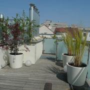 Dachterrassengestaltung 1030 Wien
