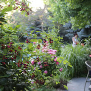 Gartenanlage Himberg