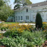 Residenz Baden Staudenbeete