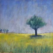 arbres II 30x30 B