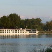 ein Hotelschiff hat in Breisach festgemacht