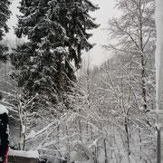Neuschnee in Bad Hindelang