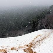 Enfin la neige est de retour sur la Dune du Pilat !