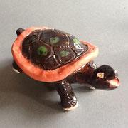 Singende Schildkröte