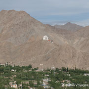 View from Shanti Stupa at Tsemo Gompa