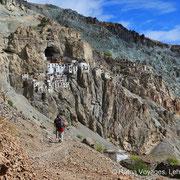 Randonnée/Trekking