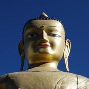 Meditationsretreats und Unterweisungen durch S.H. den Dalai Lama