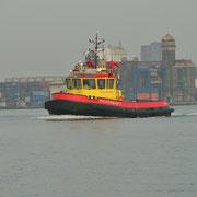 Auf dem Noordzeekanaal, Richtung Amsterdam