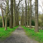 Zugangsweg zum Huis te Warmond