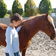 Das Pferd ist jetzt ruhig, da sie ihr eigentliches Gefühl wahrnimmt.