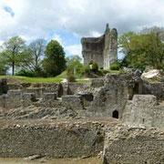 Domfront, site du château, courtine à gaine