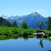 Lackenalmen im Sommer - Wandern Flachau