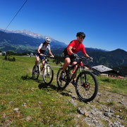 Mountainbiken Sommer in Flachau