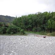 川辺から竹林を望む、あの道を上って家に帰りました、川で遊んだ後