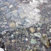 仁淀川の水