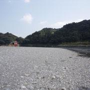 川辺から取水口を望む