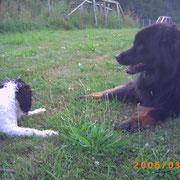Cleo und Hedi