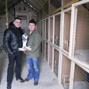 Ivica mit einer Zuchttäubin, links Kesic-rechts Ivica,  F:Nawrotzky