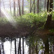 Fotos Waldviertel