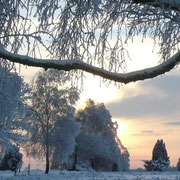 Die Sonne geht über der weiß verschneiten Heide unter