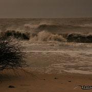 Wellen und Gischt, Wind und Wolken am Strand von Cuxhaven