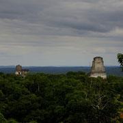 VIEW FROM TEMPLO V [TIKAL/GUATEMALA]