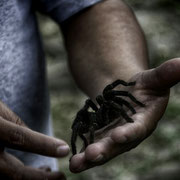 MUNDO PERDIDO [TIKAL/GUATEMALA]