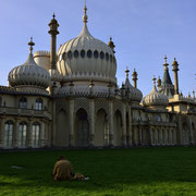 Royal Pavilon [Brighton / England]