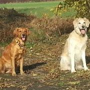 Enya & David (+) die besten Freunde