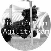 Wie ich zum Agility kam