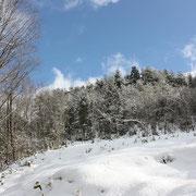 ひだ清見の風景 雪山