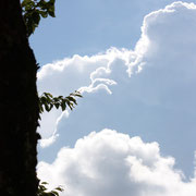 ひだ清見の風景 夏空