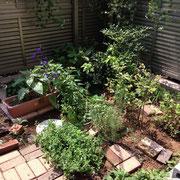 色々なものが植えられていた御庭も…