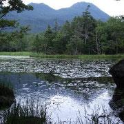 「知床五湖」
