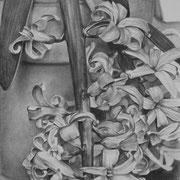 Jacynthe - Gesso, graphite et pierre noire sur toile - 41 x 33 cm - 2014 - Didier Goguilly
