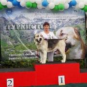 2 года Лучший Представитель Породы САС!В, Чемпион Узбекистана г. Ташкент