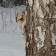Хорошо в лесу зимой, Эллочке 2 года