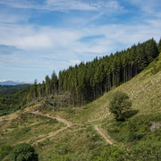 Ormaig Landart Project with view from Forestry road. Photography: Aaron Watson