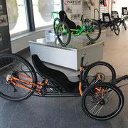 """Wild One 28"""" von BikeRevolution/Steintrike"""