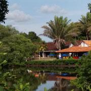 Blick vom Pool zum Restaurant
