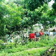aber auch in Kolumbien hengt die Wäsche vor dem Haus auf dem Stacheldraht!!!