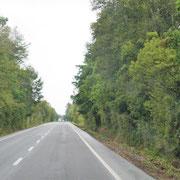 und Wälder