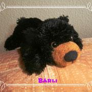 Baby-Bär - immer wissbegierig!