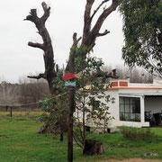 neu angelegtes Sanitärhaus