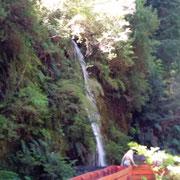 hier mal ein kalter Wasserfall (6 Grad)