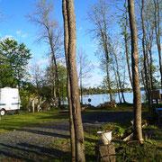 Camp am See mit tausend Mücken und BlackFlies